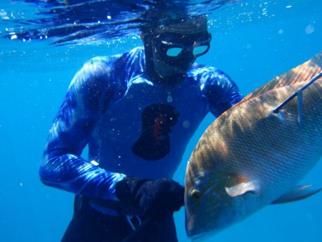 Spearfishing Trips